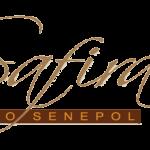 Notícias do Programa Safiras do Senepol 2013