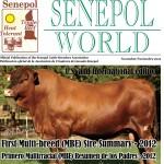Senepol – World 2012
