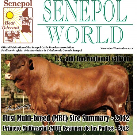 Senepol – World 2012