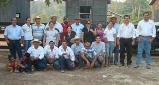 Dia de campo em Juína (MT) mostrou os benefícios da raça Senepol para o Brasil