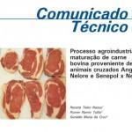 Comunicado Técnico – Processo agroindustrial: maturação de carne bovina proveniente de animais cruzados Angus x Nelore e Senepol x Nelore