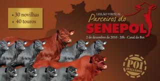 Leilão Virtual Parceiros do Senepol será realizado no dia 02 de dezembro; faça download do catálogo
