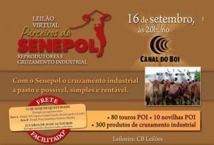 Parceiros do Senepol: Grandes eventos em 2011. Confira!