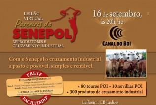 Leilão Virtual Parceiros do Senepol será realizado dia 16 de setembro