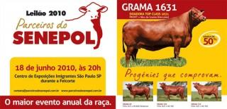 Maior evento anual da raça Senepol acontecerá durante a Feicorte 2010, em São Paulo