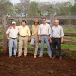 Programa PAS: Almir Sater se entusiasma com resultados e anuncia que vai inseminar mais 1.200 vacas com Senepol