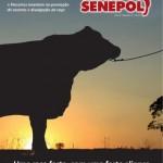 Edição 04 – 2012