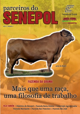 Edição 01 – 2007