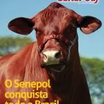 Edição 03 – 2009