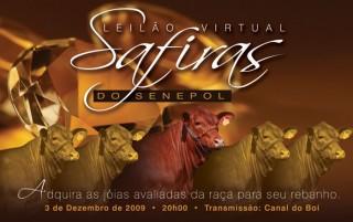 1º Leilão Virtual do Programa Safiras do Senepol será realizado no dia 03 de dezembro