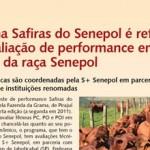 Revista InteRural: Programa Safiras do Senepol é referência para avaliação de performance em novilhas da raça Senepol