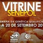 Grama participará do Vitrine Senepol 2013 – A semana da Genética Qualificada