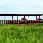 Safiras do Senepol: Novo sistema pesa Safiras e mede consumo de água