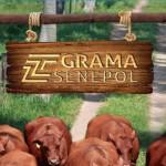 Institucional 2015 – Grama Senepol