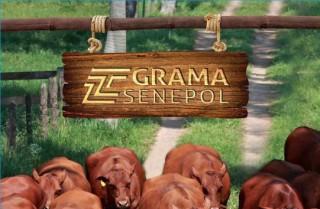 Grama é destaque na Revista Zebu – Março 2015