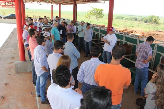 Criadores durante visita na Fazenda da Grama em Pirajuí-SP conhecendo a estrutura do Programa Safiras do Senepol. Alta tecnificação.