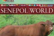Senepol World 12/2015