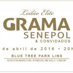 Grama comemora 17 anos de Senepol, com 40 doadoras no Leilão Elite Grama Senepol e convidados