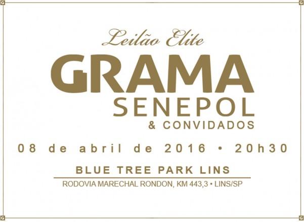 LogoLeilaoGrama2016