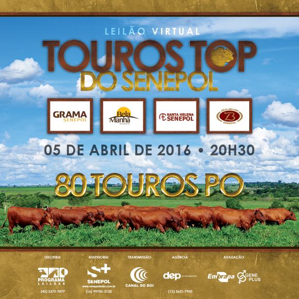 Touros Top do Senepol - 05/04/2016 - 20h30 - Canal do Boi