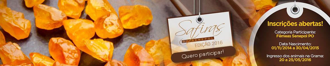 Banner Inscrições Safiras Edição 2016-1