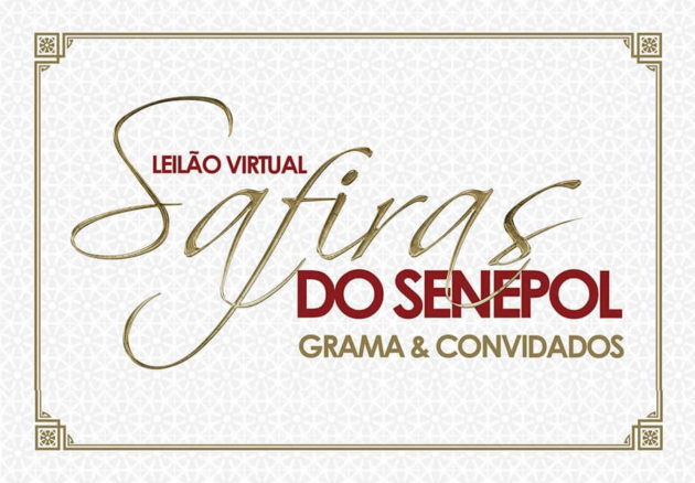 Leilão Virtual Safiras do Senepol Grama & Convidados - 29 de Junho 2016 - 21h00 - Canal Rural