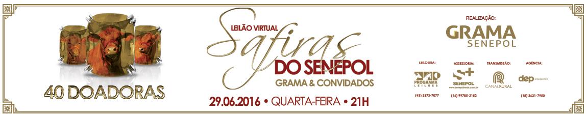 Leilão Safiras Grama traz um time de 40 doadoras qualificadas