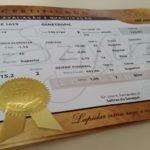 Safiras do Senepol divulga datas para edições de 2017