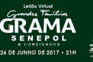 Leilão Virtual Grandes Famílias Grama Senepol e Convidados 2017
