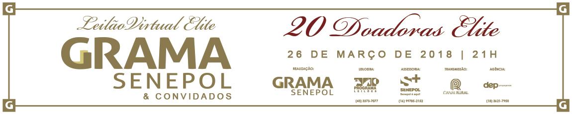 Leilão Virtual Elite Grama Senepol & Convidados 2018