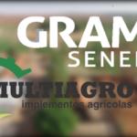 Grama Senepol + Multiagro SILOBAG