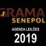 Agenda Leilões Grama 2019