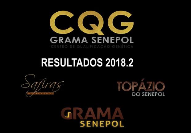 Reunião Final CQG 2018.2