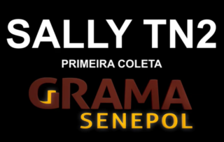 Clone SALLY TN2 – Primeira Coleta