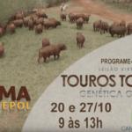 Chamada Leilão Touros Topázio 2019.1