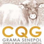 Resultado CQG Senepol – Topázio 2019.2